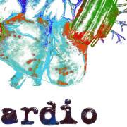 cardio_kolor_mini_2